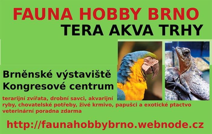 24.09.2017 - Fauna hobby Brno