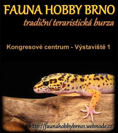 Fauna hobby 2019 -  Brno