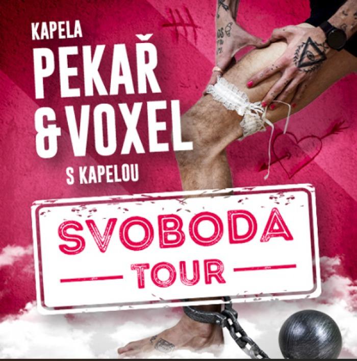 19.04.2019 - Pekař a Voxel - Svoboda Tour 2019 / Plzeň