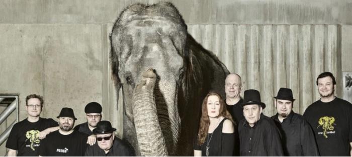 Sto zvířat - Elephantour 2019 / Červený Kostelec