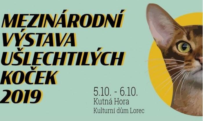 05.10.2019 - Mezinárodní výstava koček - Kutná Hora