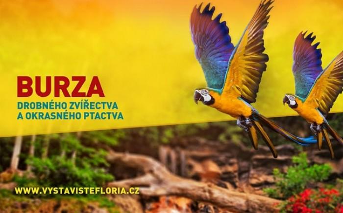 21.07.2019 - Burza drobného zvířectva a okrasného ptactva - Kroměříž