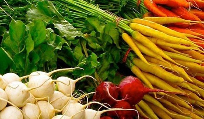 26.06.2019 - Farmářské trhy 2019 - Přelouč