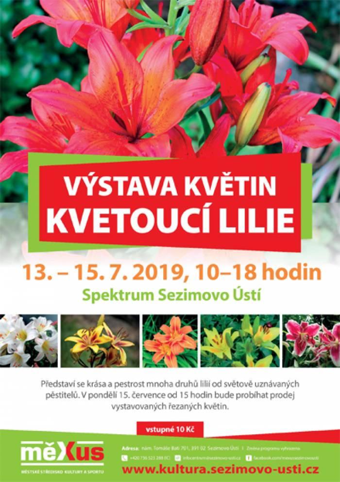 13.07.2019 - Kvetoucí lilie - Výstava / Sezimovo Ústí