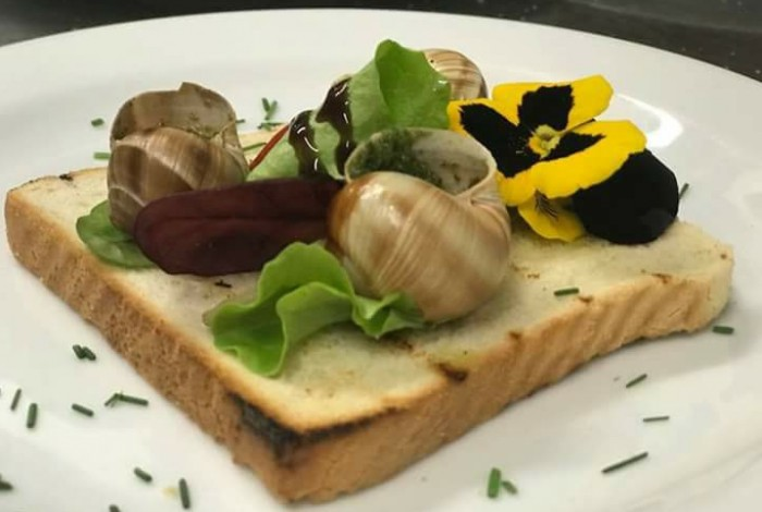 21.09.2019 - Extrem food a travel festival - Olomouc