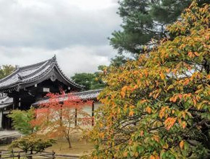 Život pod horou Fudži - Přednáška / Mělník