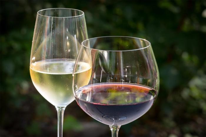 21.02.2020 - Řízená ochutnávka vín - Svinaře u Berouna