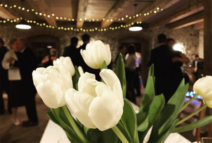 Zámecký ples - Svinaře