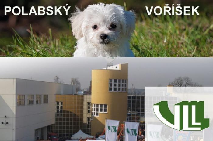 POLABSKÝ VOŘÍŠEK - Výstaviště Lysá nad Labem