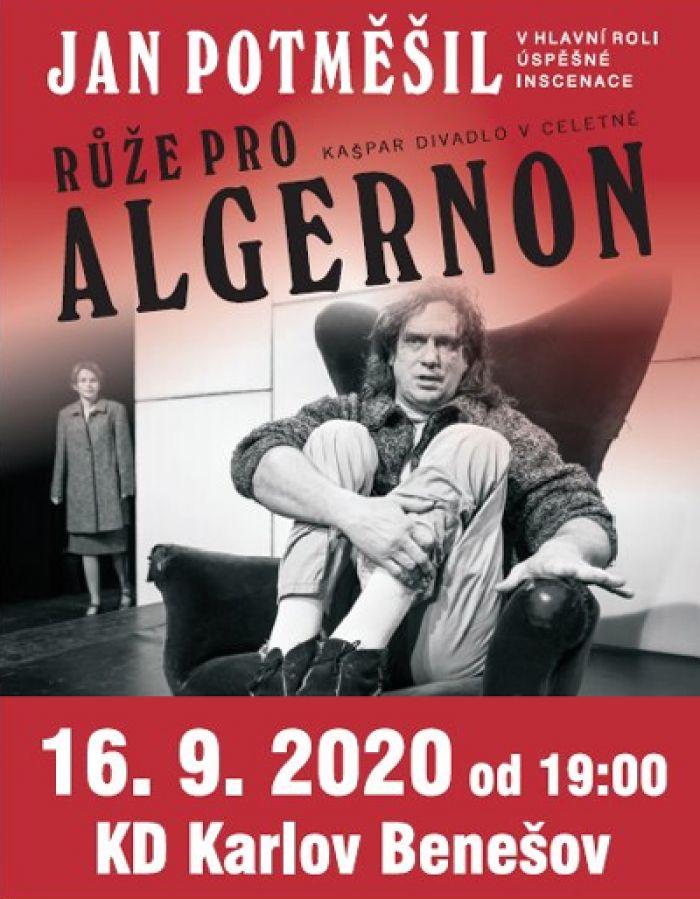 16.09.2020 - Růže pro Algernon - Divadlo / Benešov