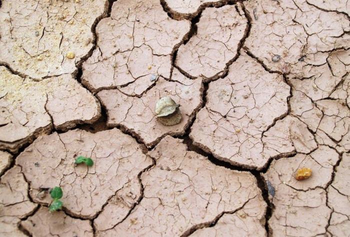 Kraj chce bojovat proti riziku sucha. Ohrožení se týká stále většího území republiky