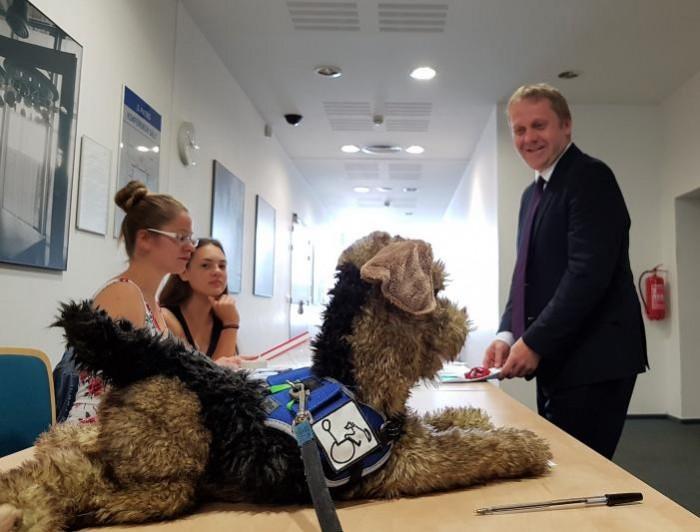 Lidé se dozvěděli, jak ještě mohou zvířata uzdravovat lidi