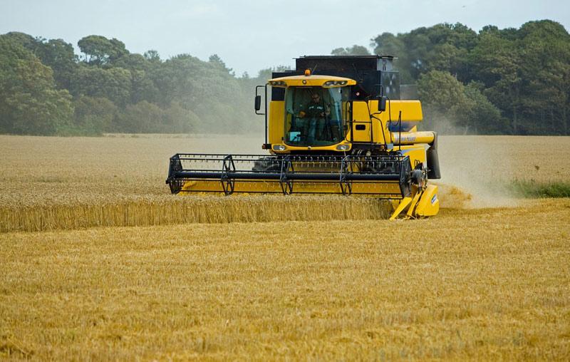 Zemědělská produkce vzrostla loni o 9 miliard