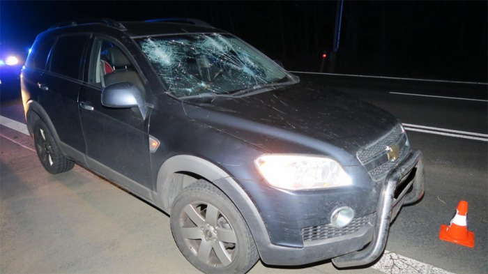 Na Plzeňsku zdemoloval vyvrácený strom řidiči auto
