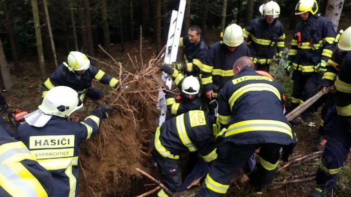 Hasiči museli vyprostit muže, kterého v lese zavalil kořen stromu