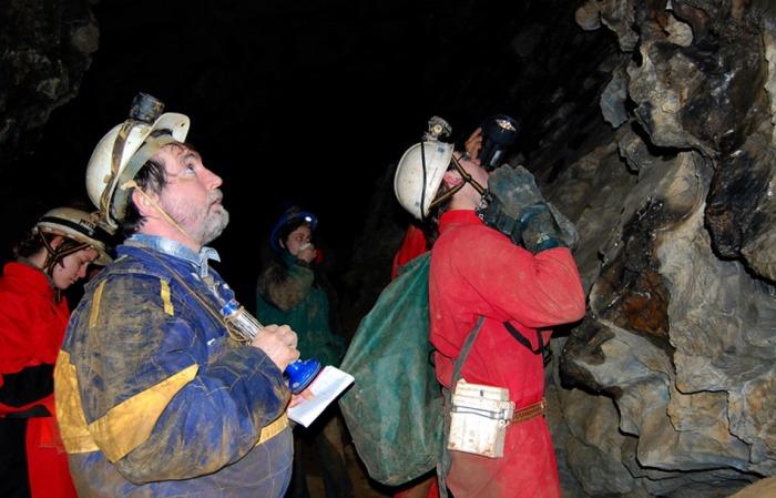 Netopýři v jeskyni Býčí skála v Moravském krasu přezimují v unikátních shlucích