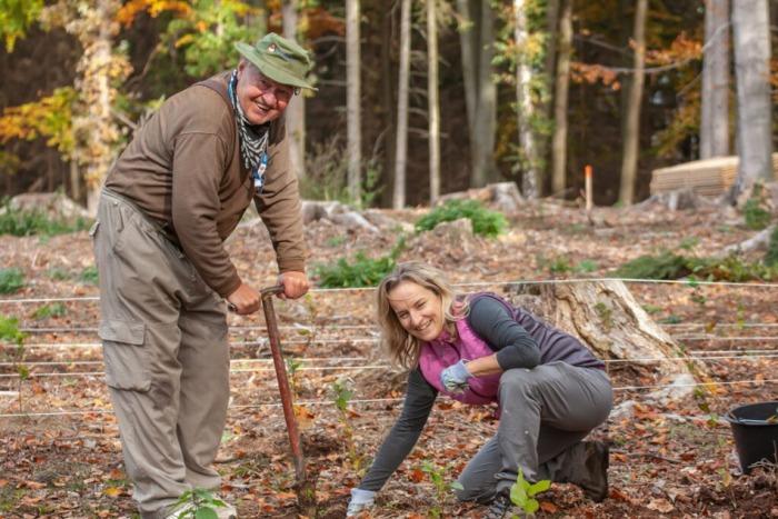 Den za obnovu lesa - Den, který nás spojuje