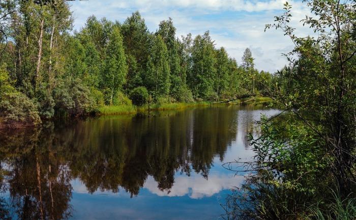 V České republice přibylo 54 čistíren, 233 km vodovodů a 393 km kanalizací