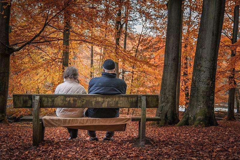 Podíl předčasných starobních důchodů každoročně narůstá