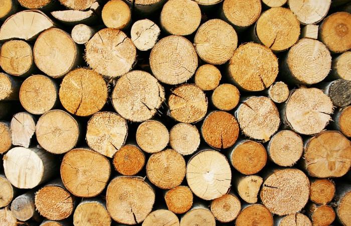 Dřevo na nový krov nebo sto tisíc korun darují Lesy ČR vlastníkům domů postiženým tornádem