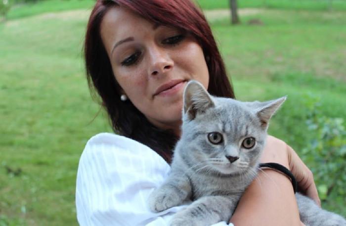 Kočka jako nový člen domácnosti. Co obnáší péče o ni?