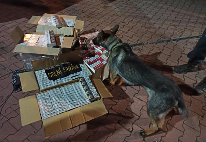 Padesát tisíc kusů nezdaněných cigaret odhalili ústečtí celníci při silniční kontrole
