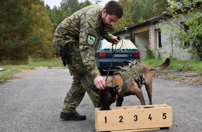 Pyrotechnikům pomáhají psi, roboti i speciální rentgeny
