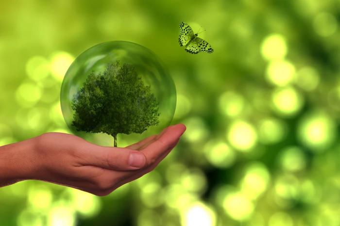 V nadcházejícím období poputuje do životního prostředí 61 miliard korun z evropských fondů