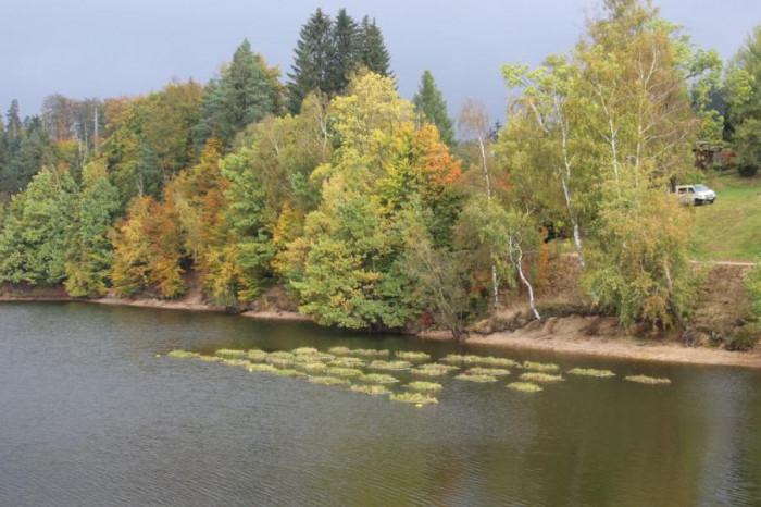 Jablonecká přehrada Mšeno má jedinečný způsob čištění vody v ČR